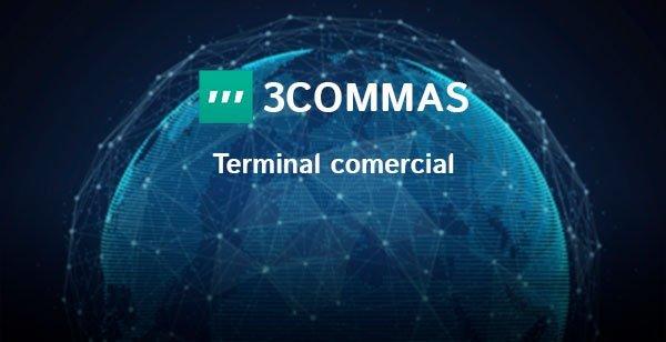 El terminal comercial